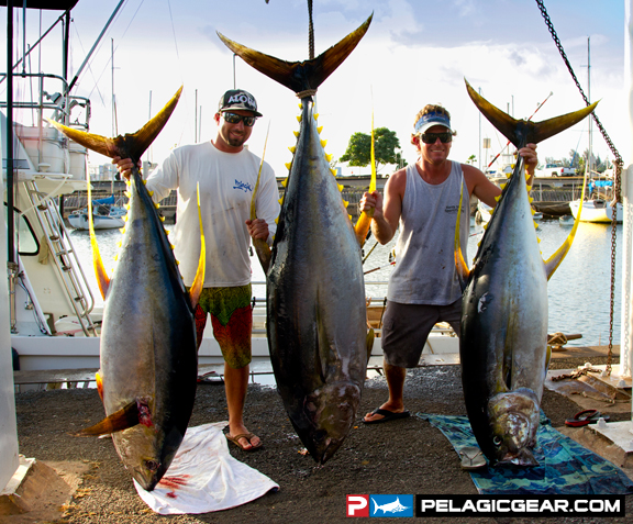The waterman 39 s journal global sportfishing news reports for Fishing in hawaii oahu